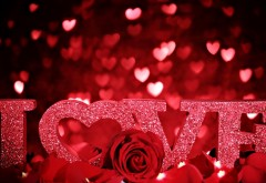 День Святого Валентина, любовь, надпись, роза, лепестки…