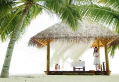 Бесплатно картинки девушка в пляжной хижине