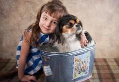 симпатичная девочка с другом собакой