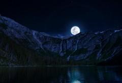 обои лунная ночь hd бесплатно