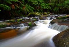 пейзажи, природа, водопады, реки, деревья, лес