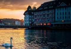 Люцерн, Швейцария, лебедь, вечер