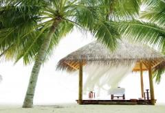 пальмы, пляж, бунгало