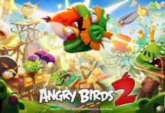 Игра 2015: Энгри Бёрдс 2